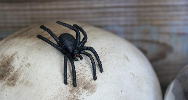 Halloween Etiketten - Deko in der Küche